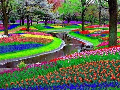 Скачать Игру Цветочный Рай Торрент Бесплатно - фото 11