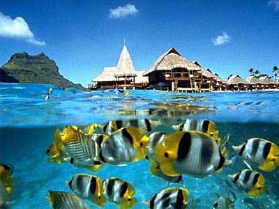 Отдых на островах. Таити - райское совершенство