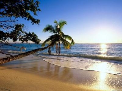 Путеводитель по Индии: в поисках песчаных пляжей