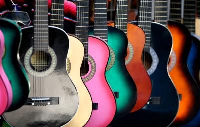 Выбор гитары