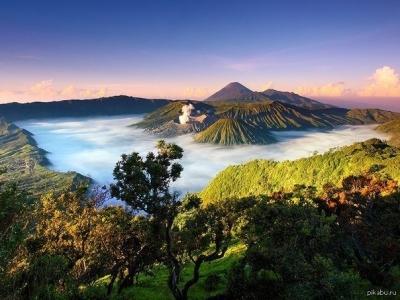 Дикая природа Борнео